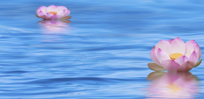 Prema Yoga – fällt aus – Karfreitag